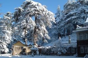 Kashmir: Snapshots