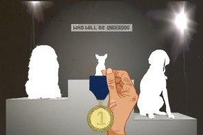 Understanding the Underdog