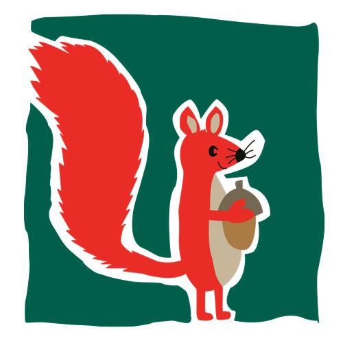 illustratie2-eekhoorn-lr