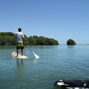 SUPing in the mangroves