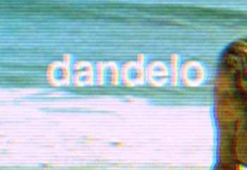 dandelo