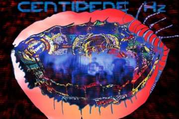 Animal Collective - Centipede Hz