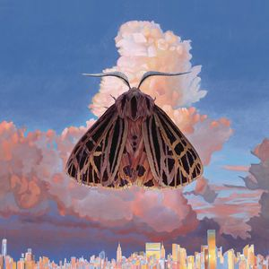 moth_cover