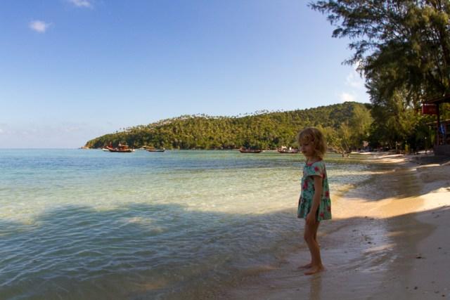 Första titten på stranden, vissa var mer blyga än andra.