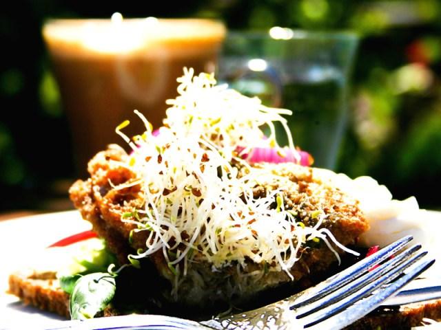 Den återkommande sillsmörgåsen i kungsparken