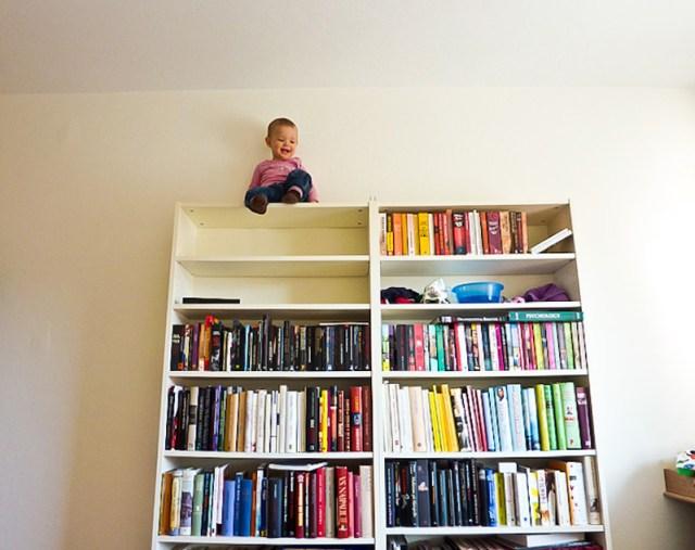Smilla har lyckats fastna uppe på bokhyllan och vägrar komma ner