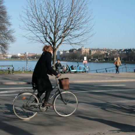 Dronning Louises fietser 52