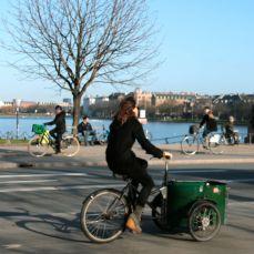 Dronning Louises fietser 42