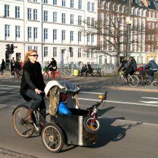 Dronning Louises fietser 37