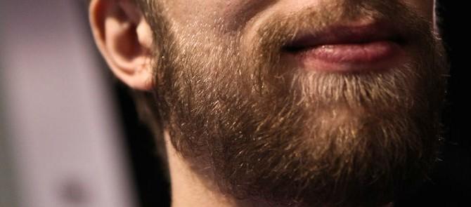 deense baard