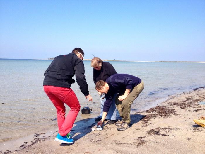 """""""Sommige mensen koken in gewoon water. Maar dan ben je natuurlijk een bedrieger!"""", aldus onze gids in het eitjeskoken Ærø-style. Koken doe je in zeewater, en afkoelen doe je ook in zeewater. En daarmee basta!"""