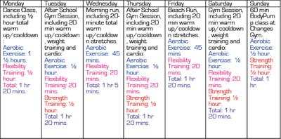 Part 4; Exercise Plan. | Healthy Lifestyle Plan