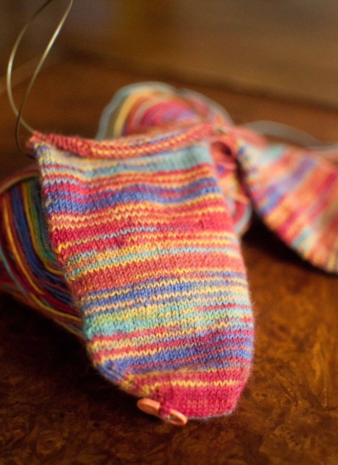 regia-socks
