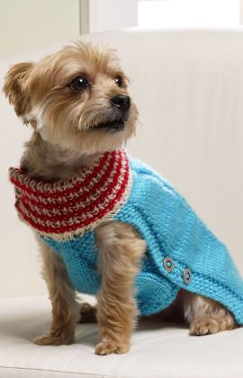 Knit a holiday sweater for a little dog knitting - Knitted dog sweater patterns ...