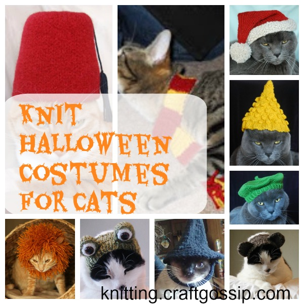 knti cat costumes for halloween
