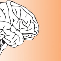 One Concussion Could Cause Permanent Brain Damage