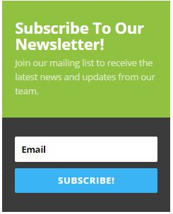 How to Grow Email List Fast subscription widget