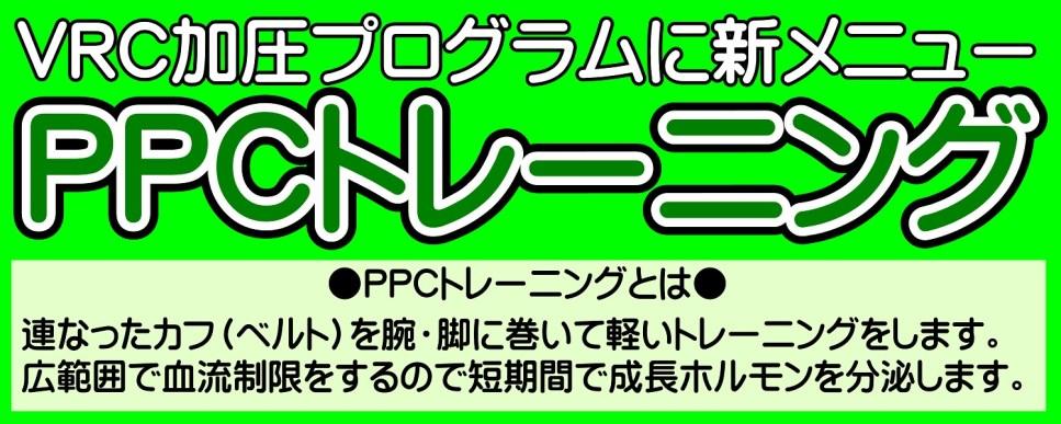 PPCT① HP 1