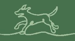 green_dog_sml