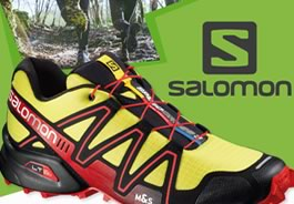 Banner Adventura - Salomon
