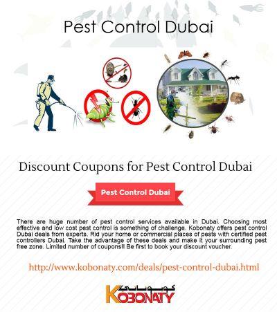 Pest Control Dubai – Discount Coupons   Dubai deals and discounts - Kobonaty
