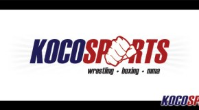 Server Update: Kocosports.com as Wreck It Ralph