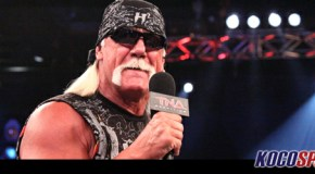 Hulk Hogan Apologizes For Recent Twitter Actions