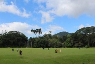 SriLanka_Blog1_044
