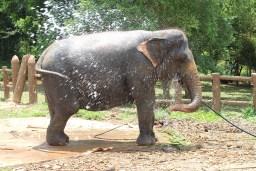 Blog0716-SriLanka-IMG_2809