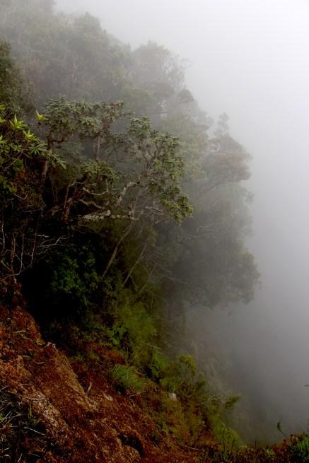Blog0716-SriLanka-IMG_2974b