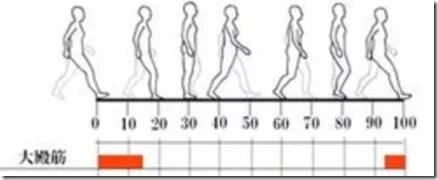 股関節痛み原因治療 大殿筋筋活動
