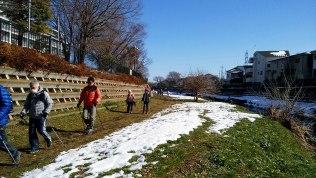 雪の残る野川