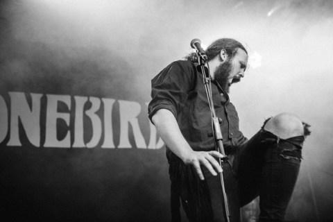 Stonebird at Smukfest 2016
