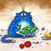 Коты Ирины Зенюк