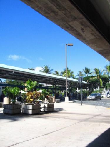 Hawaii2009 174