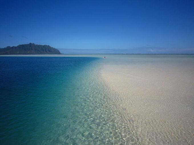"""子連れハワイで行きたい""""天国の海"""""""