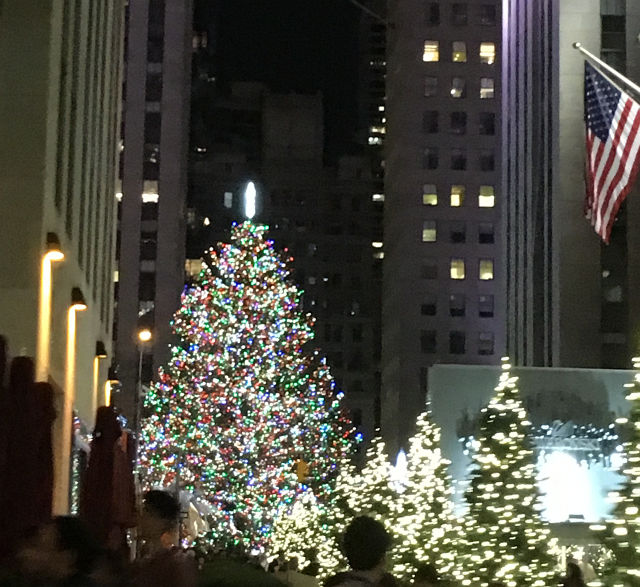 子連れでクリスマスのニューヨークへ