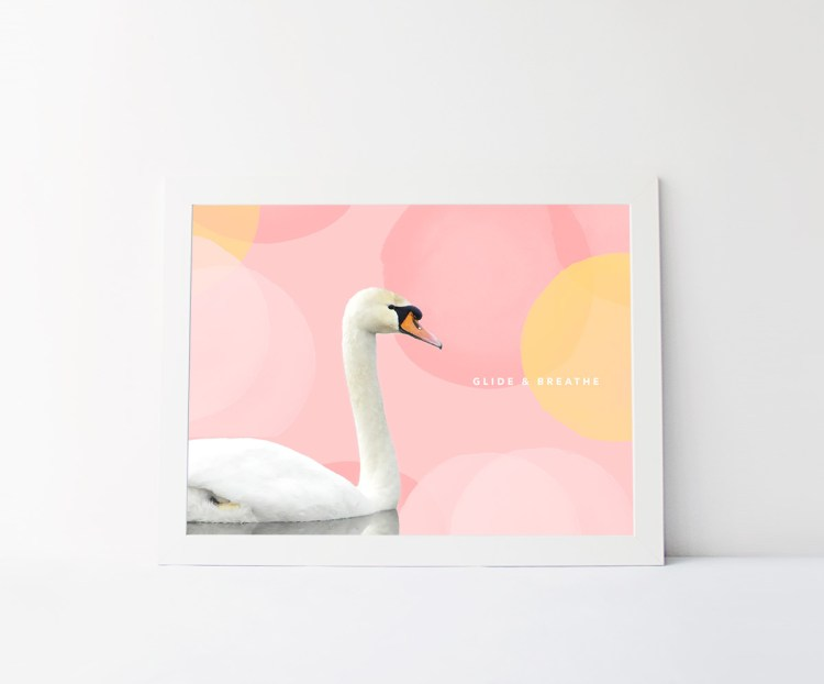 What inspires you? (Series) On Swans - kraft&mint
