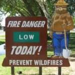 FIRE LOW