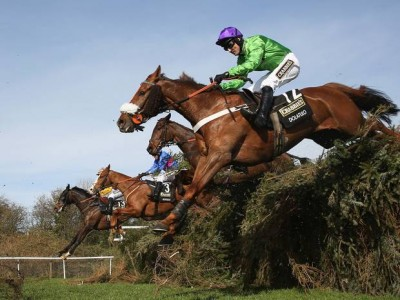Grand National Cheltenham Gold Cup