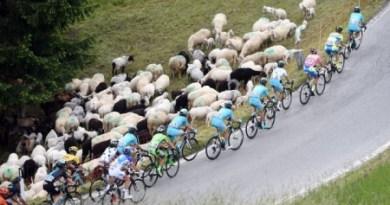 Contador Giro dItalia title