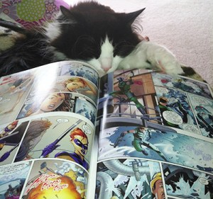 This picture of my cat reading Smallville proves comics are for everyone, even felines.
