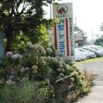 JR東日本レール&レンタカーの割引率や週末パストクだ値モバイルsuica特急券の場合は?