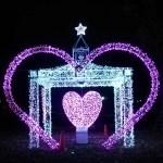 光の祭典足立区元渕江公園のイルミネーションオススメ混雑状況期間は?