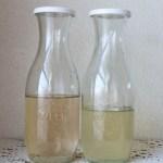 梅シロップ13日目で完成梅を冷凍と冷凍しないの比較量や味や香りは?