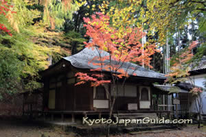 Fall colors at Kozan-ji