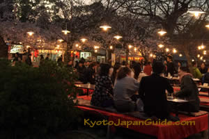 Partying under cherry blossoms 027