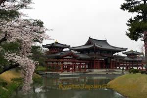 Byodo-in Temple 001