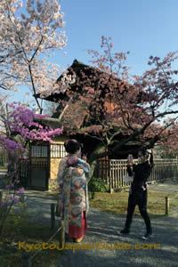Kimono at Shosei-en Garden 005