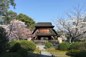 Shosei-en garden 015
